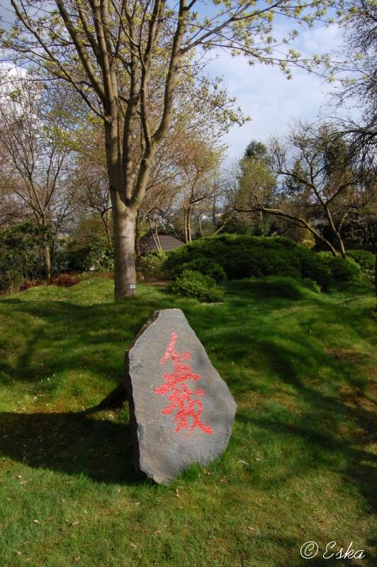 13048260 japonská zahrada