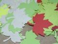 listy podzimni